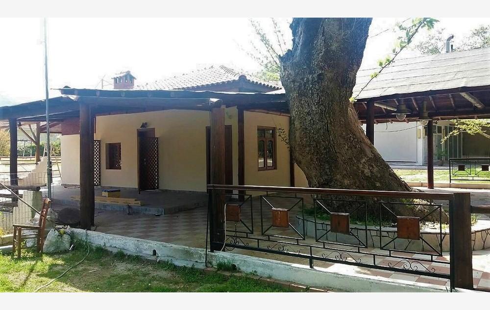 vila-platanos-stavros-5503-1