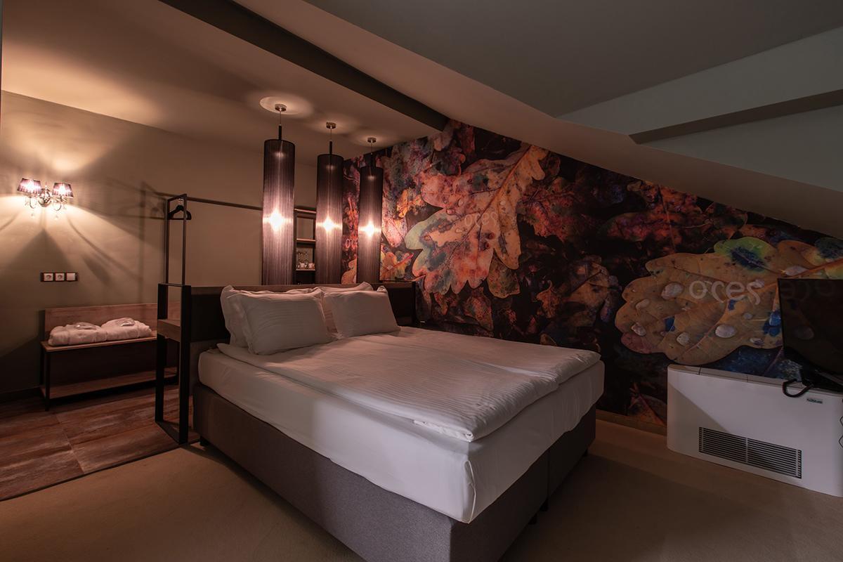 Ores_Boutique_Hotel,_Bansko_1100007515