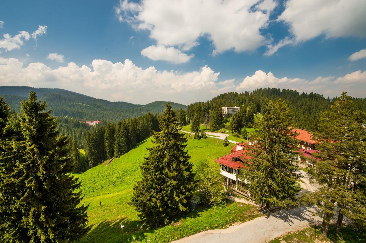 Snezhanka_Hotel_Winter_Half_Board_Pamporovo_33900005713